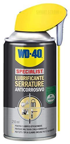 WD-40 Specialist – Lubrificante Serrature Spray Anticorrosivo con Sistema Doppia Posizione, 250 ml