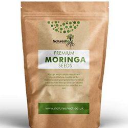 Natures Root Semi di Moringa Oleifera – Senza OGM   Semi commestibili   Grande e Germinabile
