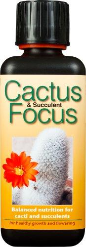 Fertilizzante liquido concentrato Cactus and Succulent Focus 300ml
