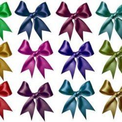 Sue Douglas – Fiocchi decorativi in raso, misura media, colori intensi e brillanti