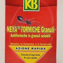 Insetticida Nexa Formiche Granuli 800 gr KB 2