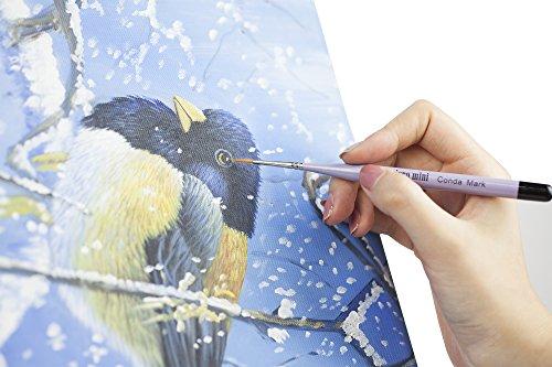 CONDA Set di Pennello da Pittura per Dipingere,Pennello da Artista per Olio E Acrilico Pittura Artista 12 Pezzi 8