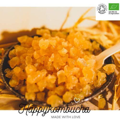 Kefir Happy Kombucha, grani d'acqua, probiotici vivi, cristalli d'acqua, batteri probiotici, acceleratore di probiotici.