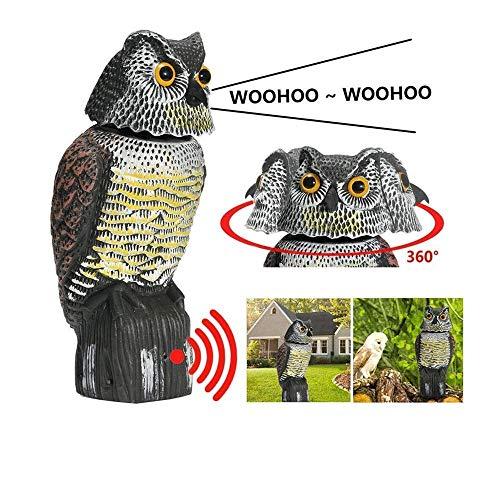 Bravoy – Gufo Spaventapasseri con suono spaventoso per allontanare gli uccelli, 360 giri