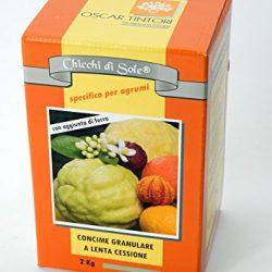 Chicchi di sole 2 kg Concime specifico per Agrumi