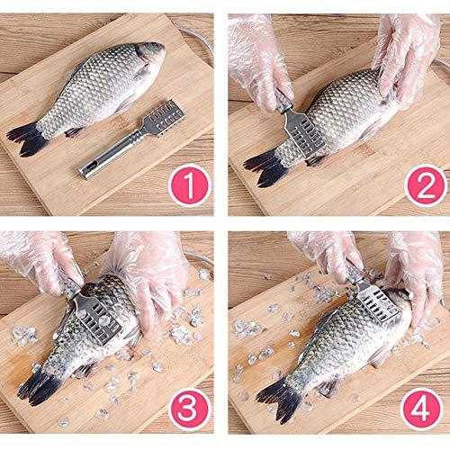 yyuezhi 2 Pezzi Raschietto per Pesce Squamatore per Pesci Squame di Pesce Spazzole Gadget da Cucina Raschiatore per Pesce in Acciaio Inossidabile Rimuovi Rapidamente le Squame Raschietto Multifunzione 8