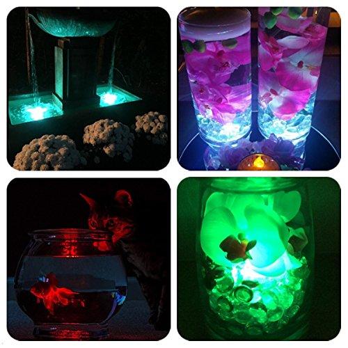 Bebliss Rabbit Legno Pasqua Decorazione Catena Leggera con Lanterna Bar Decorazione Yarda Batteria Scatola Camera LED 2
