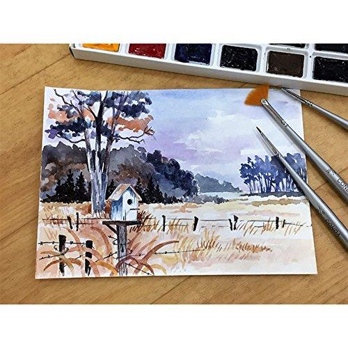 CONDA Set di Pennello da Pittura per Dipingere,Pennello da Artista per Olio E Acrilico Pittura Artista 12 Pezzi 9