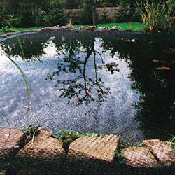Siena Garden 543288 – Rete di copertura per laghetto, 4 x 5 m, 20 x 20 mm