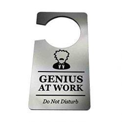 Origine progettato Genius at work, Do Not Disturb–Generic argento, stanza, targa per porta, ideale per un regalo originale